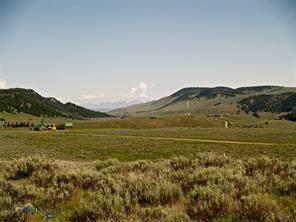 Lot 56 Madison River Ranches, Cameron, MT 59720 (MLS #345938) :: Black Diamond Montana