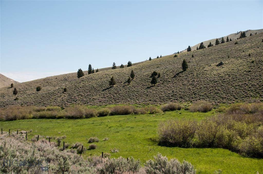 2825 Middle Fork Little Sheep Creek - Photo 1