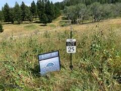Lot 25 Claim Creek Road, Bozeman, MT 59715 (MLS #349522) :: L&K Real Estate