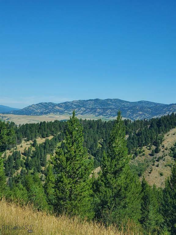 1155 Colt Road, Bozeman, MT 59715 (MLS #350541) :: L&K Real Estate