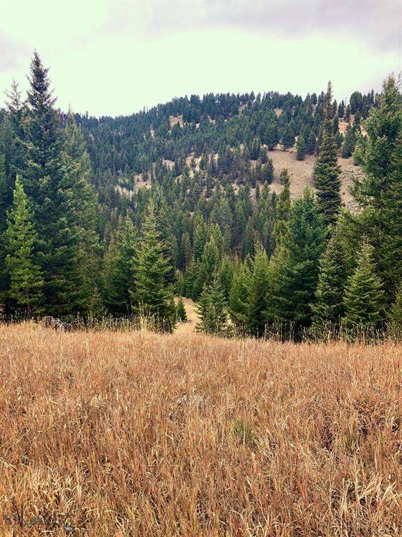 TBD Beaver Creek Road, Big Sky, MT 59716 (MLS #350901) :: L&K Real Estate