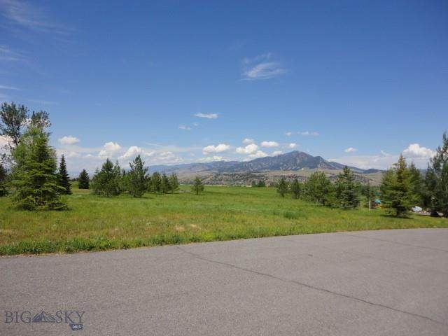 417 Ryan Drive, Bozeman, MT 59715 (MLS #351039) :: Coldwell Banker Distinctive Properties