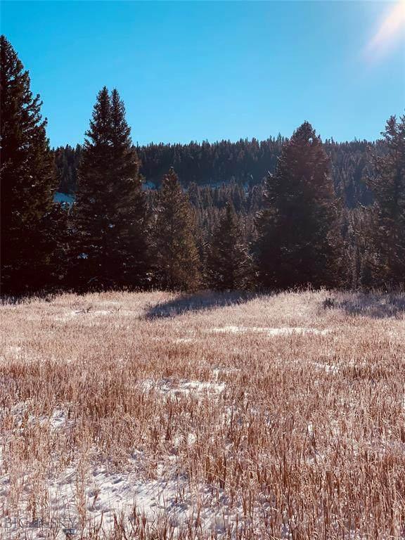 Lot 19A-1 Ousel Falls, Big Sky, MT 59716 (MLS #352760) :: Montana Home Team