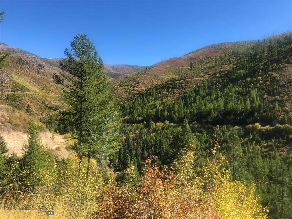 TBD Eight Mile Creek - Unit 1 Road - Photo 1