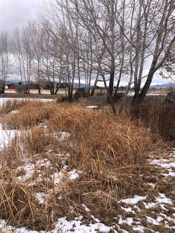 210 North Lane, Dillon, MT 59725 (MLS #354383) :: L&K Real Estate