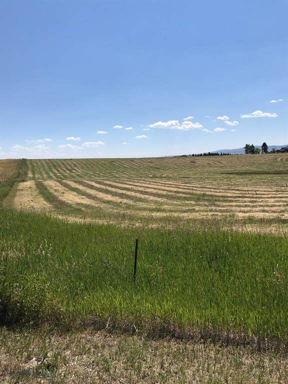 NHN E South Street, White Sulphur Springs, MT 59645 (MLS #354462) :: L&K Real Estate