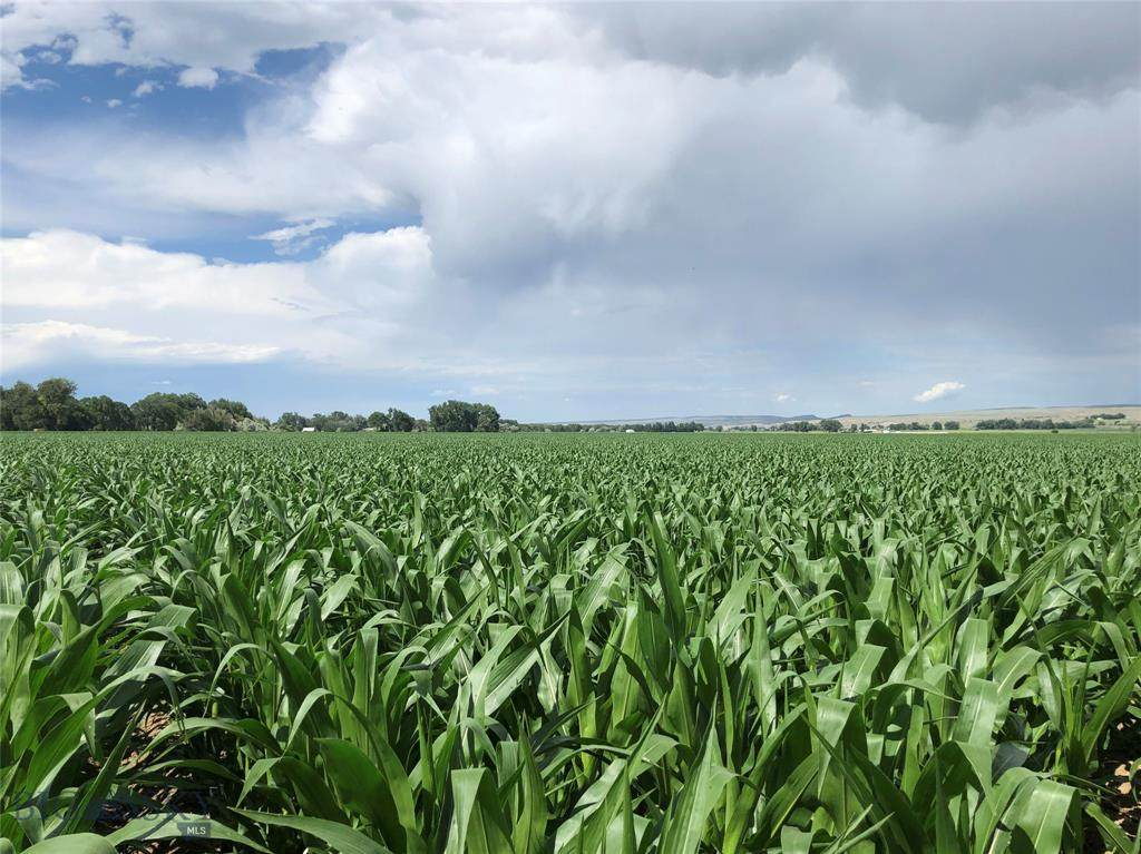 5 Spencer Farms Lane - Photo 1