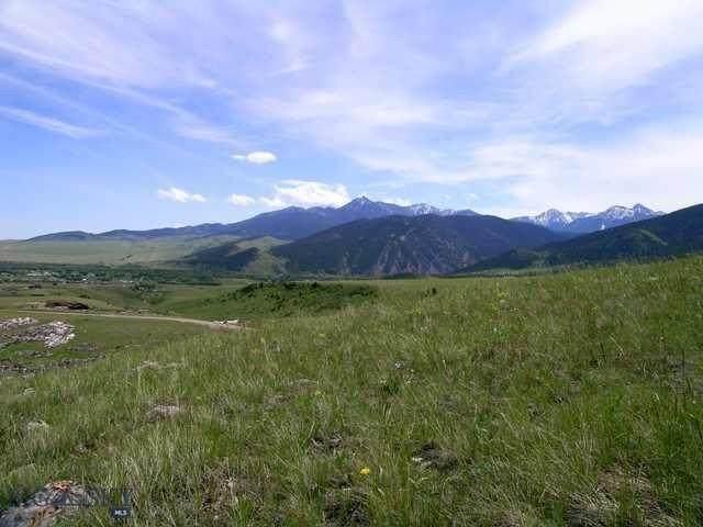 NHN Wineglass Loop South, Livingston, MT 59047 (MLS #355966) :: Montana Home Team