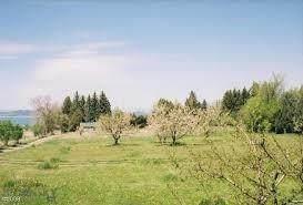 1522/1610 Hillcrest Drive, Polson, MT 59860 (MLS #357268) :: L&K Real Estate