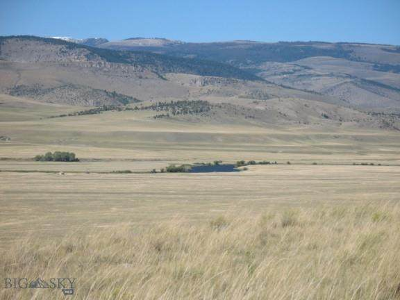 Lot 21 Sphinx Mountain Subdivision, Cameron, MT 59720 (MLS #357996) :: Hart Real Estate Solutions