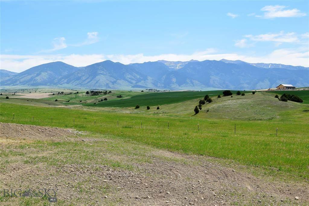 Lot 3C Prairie Falcon Lane - Photo 1