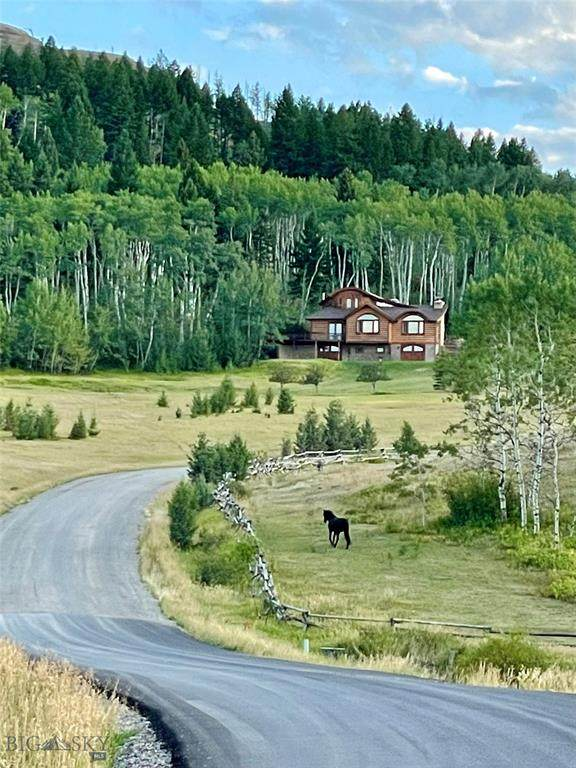122 S Big Elk Meadow, Gallatin Gateway, MT 59730 (MLS #360006) :: Hart Real Estate Solutions