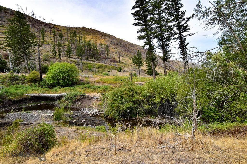 TBD Dry Creek Road - Photo 1