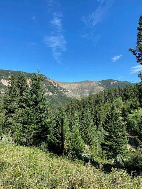 NHN Alpha Six Lane, Monarch, MT 59463 (MLS #361900) :: Black Diamond Montana