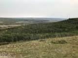 NHN Arlie Tracts - Lot 30, Babb, MT 59411 (MLS #362562) :: Montana Home Team