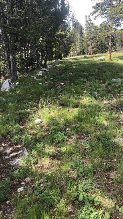 TBD Kimmel Mining Claims, Polaris, MT 59746 (MLS #362594) :: Black Diamond Montana