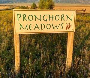TBD Browtine Lane, Ennis, MT 59729 (MLS #362843) :: Berkshire Hathaway HomeServices Montana Properties