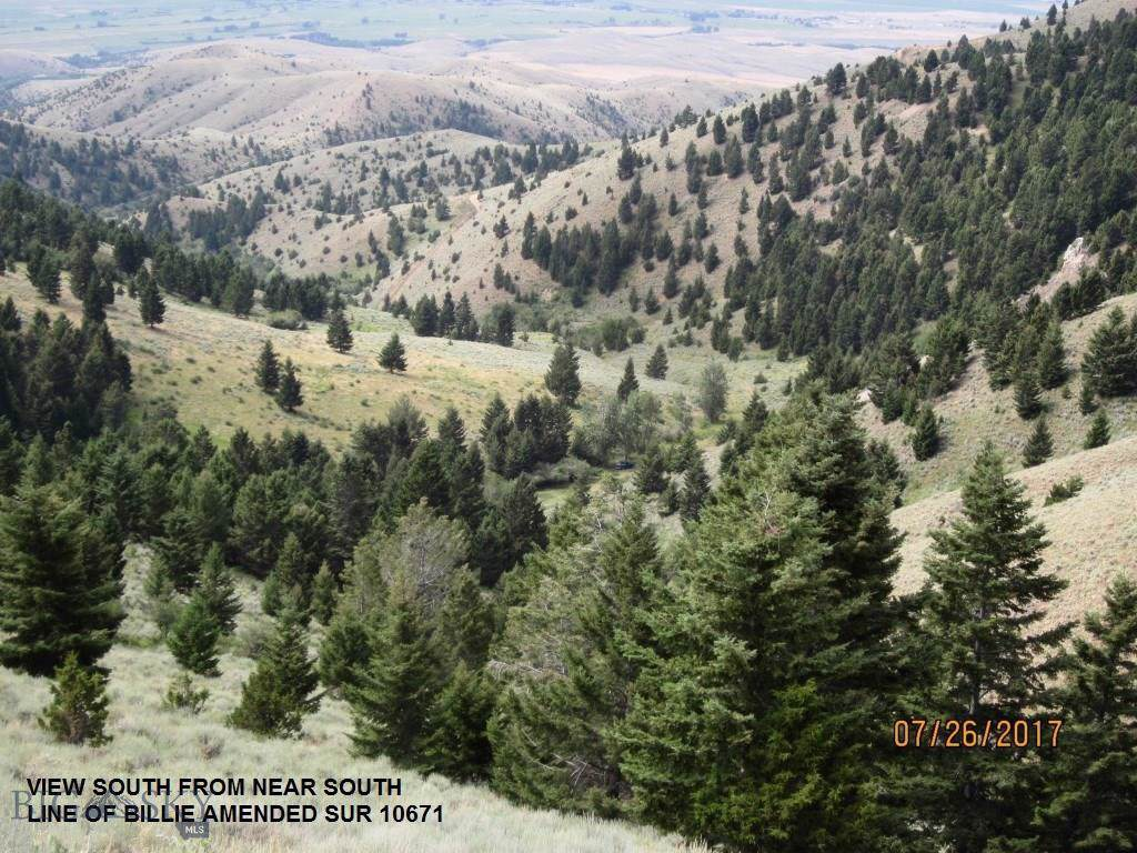tbd Tobacco Root Mountains South - Photo 1