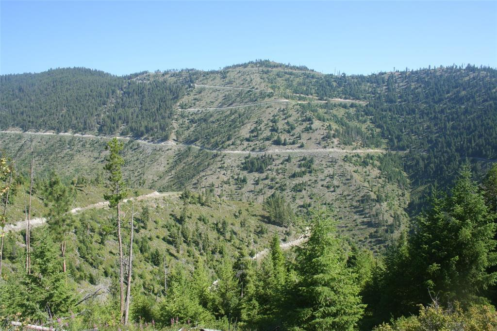 TBD Unnamed Access Off Hwy 12 - Photo 1
