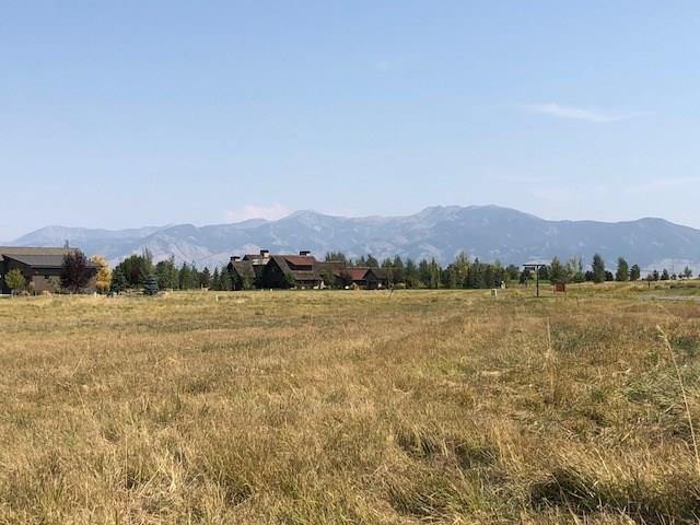 Lot 346 Black Bull Trail, Bozeman, MT 59718 (MLS #325942) :: Black Diamond Montana