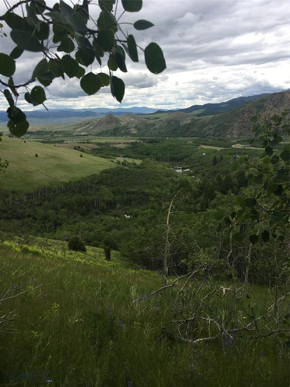 Lot 31 Bear Paw Trail, Anaconda, MT 59711 (MLS #326979) :: Hart Real Estate Solutions