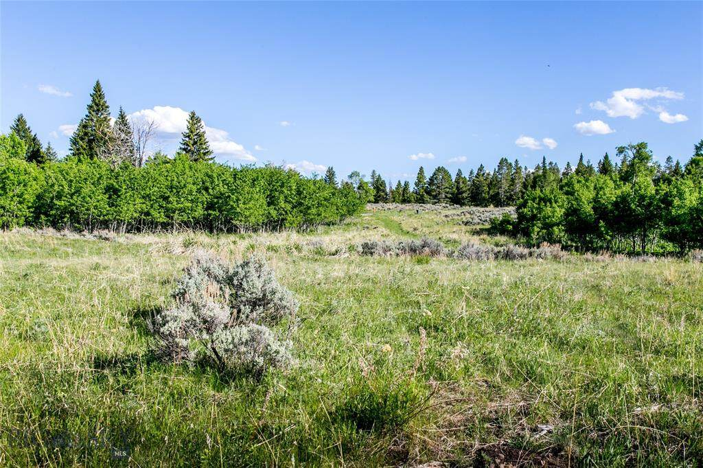 Lot 33A Sun West Ranch - Photo 1