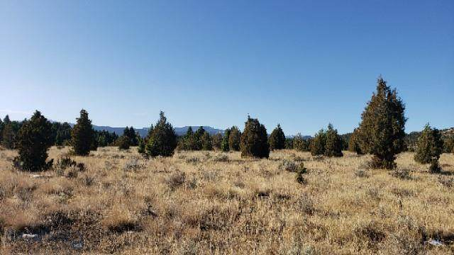 TBD Deadwood Trail, Ramsay, MT 59748 (MLS #351275) :: Montana Life Real Estate