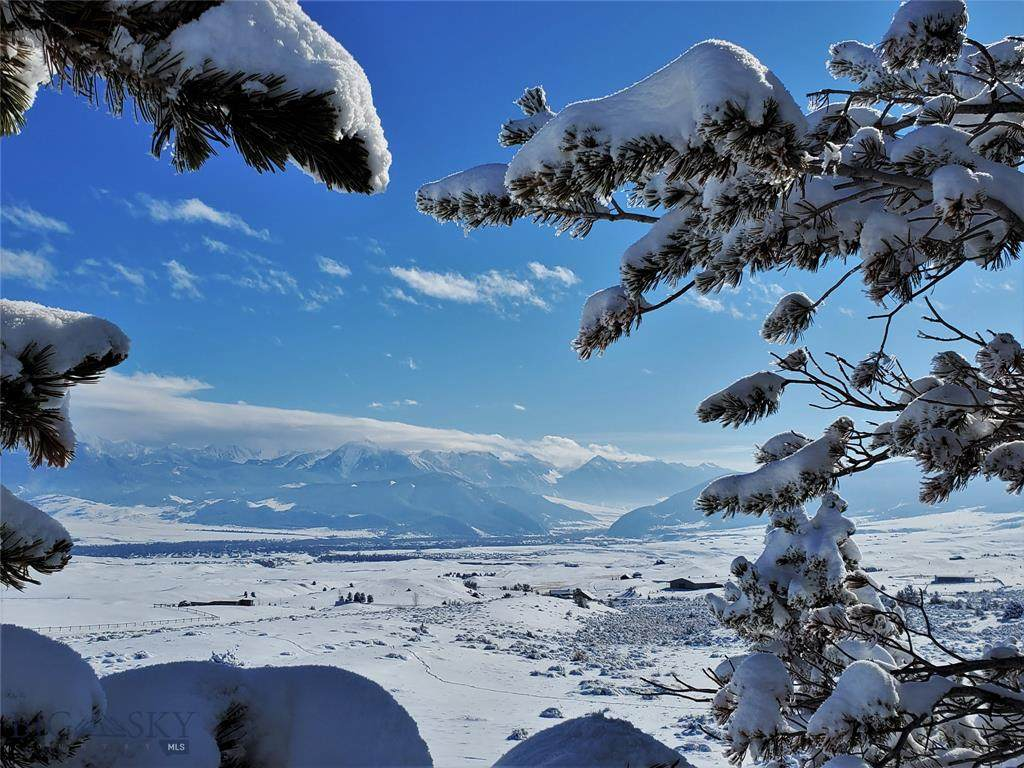 https://bt-photos.global.ssl.fastly.net/montana/orig_boomver_2_355211-2.jpg