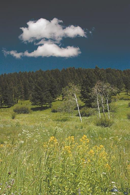 TBD Center Hill Road, Bozeman, MT 59715 (MLS #214516) :: Black Diamond Montana