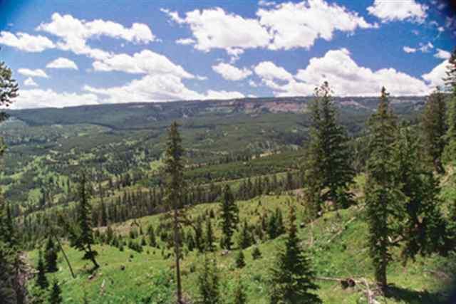Lot 16 Big Ez - Charlie Russell Loop, Big Sky, MT 59716 (MLS #200918) :: Black Diamond Montana