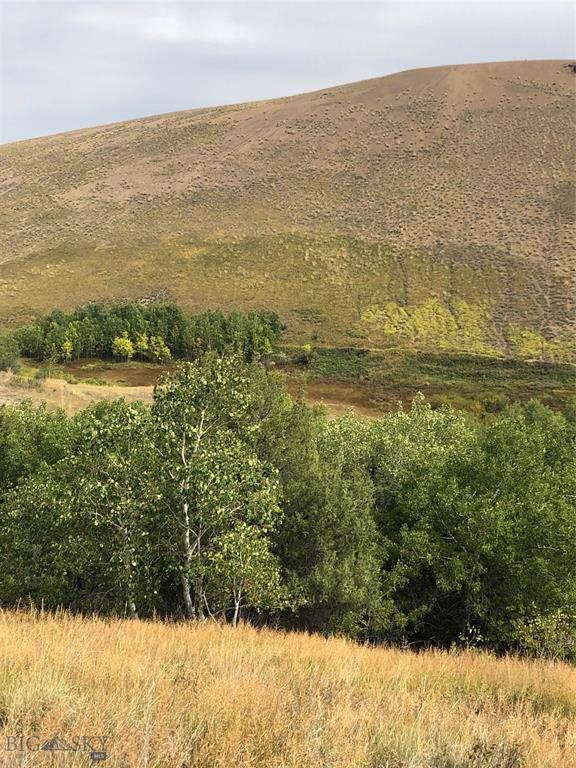 TBD Outlaw Trail Lot 76, Anaconda, MT 59711 (MLS #330292) :: Hart Real Estate Solutions