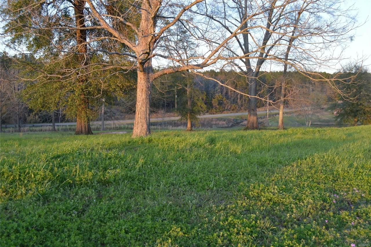 LOT 45 County Road 561 Road - Photo 1