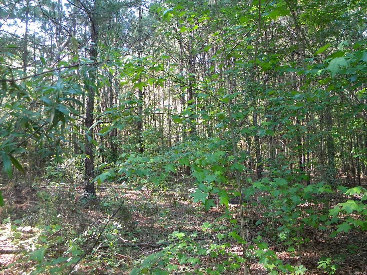 0 County Road 99 Road - Photo 1