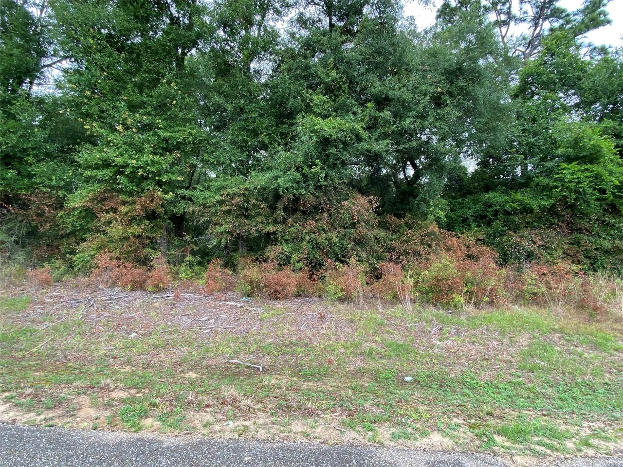 1.63 Acres W V Armstrong Road - Photo 1