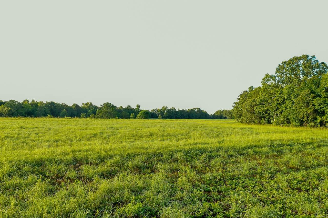 60 Dewberry Trail - Photo 1