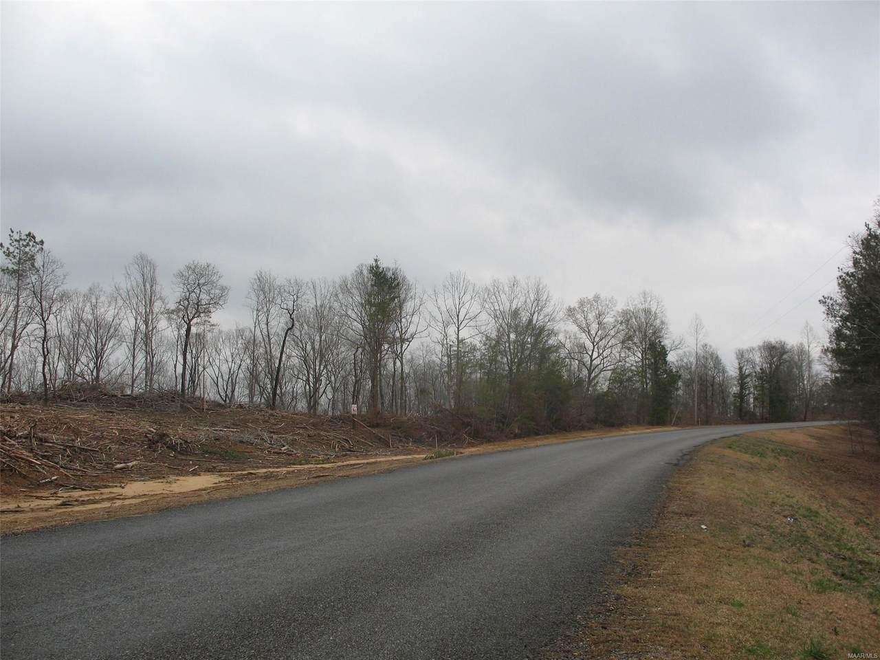 0 County Road 229 Road - Photo 1