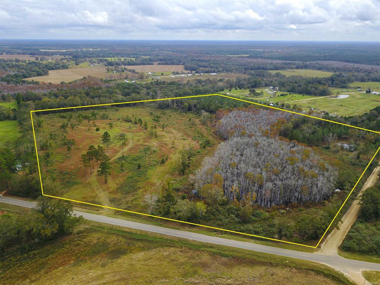 43 Acres County Road 49 Circle - Photo 1