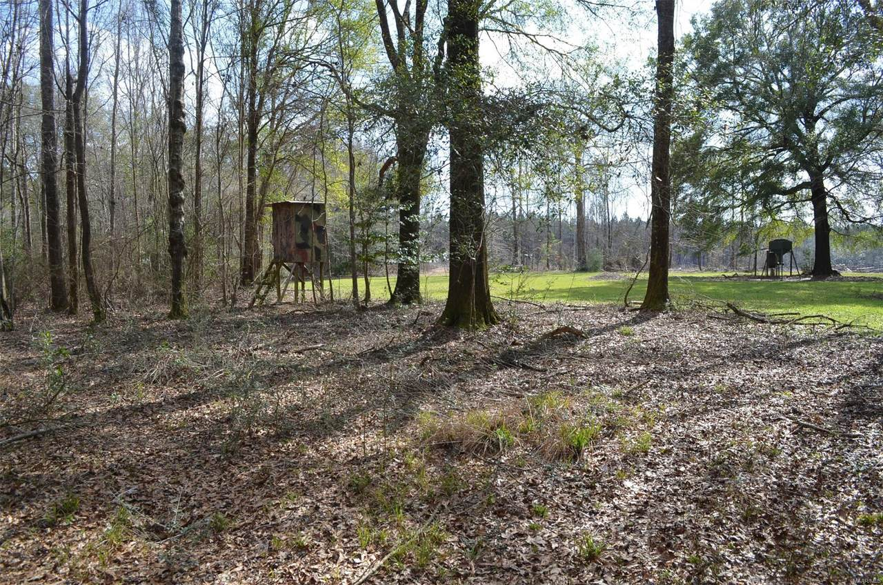 00 Halso Mill Road - Photo 1