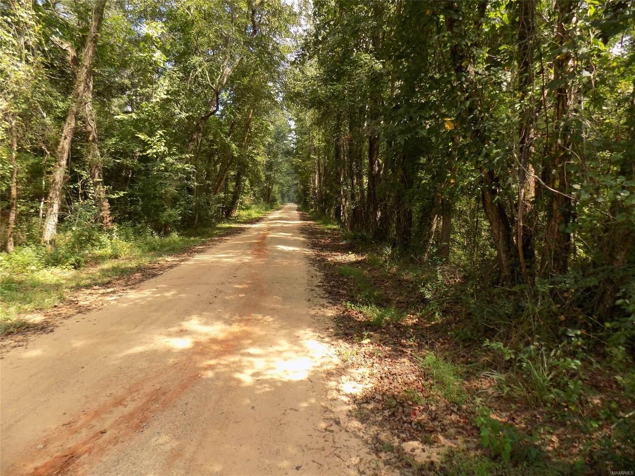 000 County Road 332 - Photo 1