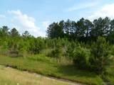 000 Hickory Tree Lane - Photo 4