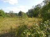 9.8 acres Whittle Hudson Road - Photo 5