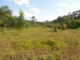 9.8 acres Whittle Hudson Road - Photo 6