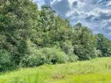 126.5 Acres Ballard Road - Photo 11