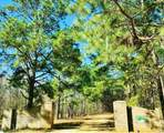 Lot 132 Red Eagle Drive - Photo 1