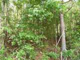 2.2 ACRES Robin Parker Road - Photo 4