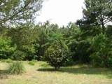 2.2 ACRES Robin Parker Road - Photo 5