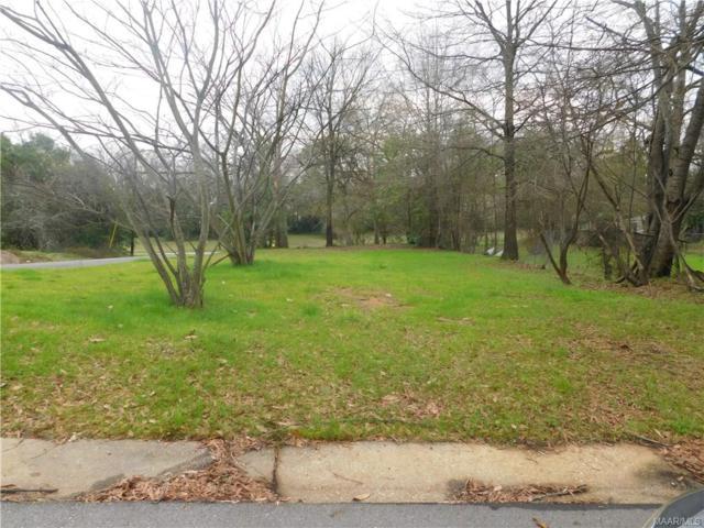501 Elm Street, Montgomery, AL 36108 (MLS #410417) :: LocAL Realty