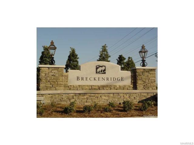 8945 Thompson Ridge Loop, Montgomery, AL 36117 (MLS #434200) :: Buck Realty