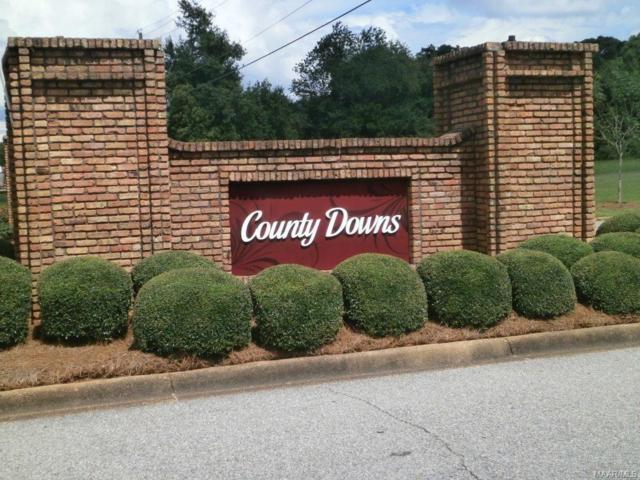 700 County Downs Road, Montgomery, AL 36109 (MLS #436049) :: LocAL Realty