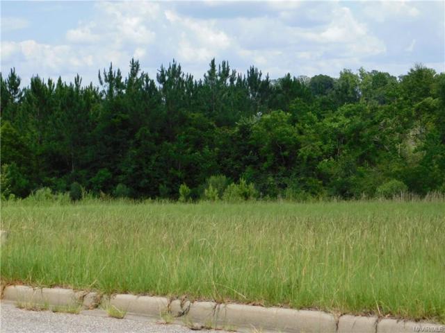 230 Clearview Drive, Enterprise, AL 36330 (MLS #436199) :: Buck Realty